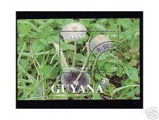 0657++GUYANA  BLOC CHAMPIGNON  N°3