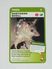 Woolworths Aussie Animals Baby Card -2 Northern Quoll