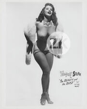 """TEMPEST STORM BURLESQUE """"The Beauty & the Bust"""" Erotique Nu Strip-Tease Photo50s"""