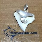 B47 27MM BULL SHARK TOOTH SILVER U WILL GET ITEM IN PHOTO SURFING WAVE TUBE