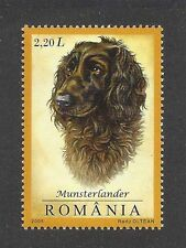 Dog Art Head Study Portrait Postage Stamp Small Munsterlander English Setter Mnh
