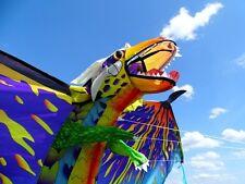 Einleiner: 3D-Drachen Drache 193cm new color