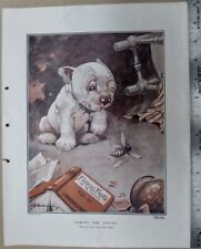 BONZO DOG ORIGINAL PRINT FROM THE SKETCH  G. STUDDY TAKING THE COUNT LOT 6