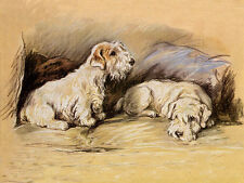 SEALYHAM TERRIER CHARMING DOG GREETINGS NOTE CARD TWO DOGS ON COUCH