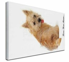 More details for cairn terrier dog 'love you mum' x-large 30