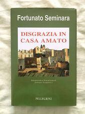 Disgrazia in casa Amato - Fortunato Seminara - Pellegrini