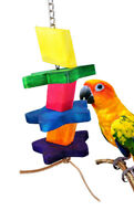1335 Wood Star Bonka Bird Toy parrot cage toys cages african grey cockatoo macaw