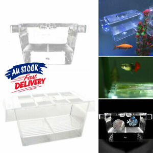 Guppy Hot Double Breeding Hatchery Rearing Trap Box Breeder Fish Tank Aquarium