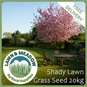 Shady Lawn Grass Seed 20KG  - TOUGH QUALITY GRASS FOR DARK & SHADED AREAS