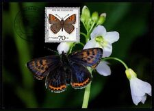 BRD MK 1991 SCHMETTERLINGE BUTTERFLIES MAXICARD CARTE MAXIMUM CARD MC CM /m471