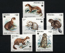 (W0128) POLAND, U/M (MNH), ANIMALS/MUSTELIDS 1984