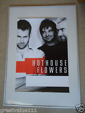 HOTHOUSE FLOWERS CONCERT GIG POSTER 1988 UNRELEASED PRINTERS POSTER 30 YEARS GEM