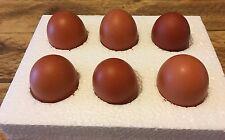 12 x Fertile Hatching Chicken Eggs - Browns Mixed Breeds