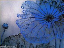 11ct Stamped Cross Stitch kit Blue Lotus Needlework Craft Kit CR2004