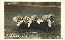 1940s Gays Lion Farm Tub El Monte California RPPC Real photo 1417