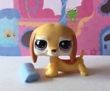 Littlest Pet Shop #2529 Orange Dachshund Dog With Original Accessory