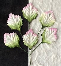 20 Sunflower Leaves small variegated Green Pink floral cards wreaths dolls hats