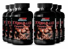 Protodioscin Powder - Tribulus Terrestris 1000mg - Male Extender 360 Tablets 6B