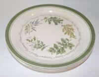 "Vintage Corelle Corning Thymeless Herbs  Dinner Plates 10 1/4 "" Set of 6"