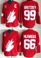 Throwback #99 Wayne Gretzky #66 Mario Lemieux Team Canada Jersey All Stitched