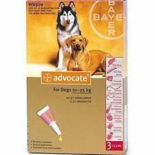 Advocate for Dogs 10 - 25Kg Large Dogs 3 Pack Flea and Lice Treatment