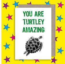 Turtle Amazing Greeting Card - Thank You - Congratulations -  Anniversary card
