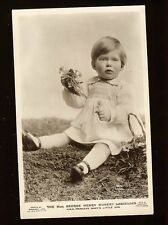 Beagles Photo Postcard England George Herry Hubert Lascelles Princess Mary Son