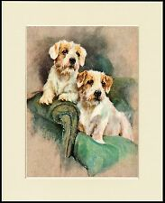SEALYHAM TERRIER TWO DOGS IN A CHAIR LOVELY DOG PRINT MOUNTED READY TO FRAME