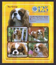 Cavalier King Charles Spaniel*Int'l Postage Stamp Collection*Great Gift Idea*