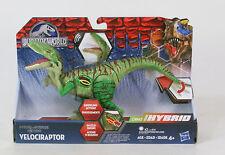 Jurassic World Dino Hybrid Velociraptor   MIB Hasbro