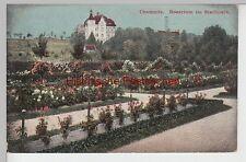 (106512) AK Chemnitz, Rosarium im Stadtpark, 1911
