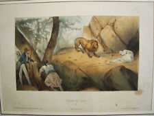 Caza de leon.Litografia original con color.Bulla Lemercier.Paris circa 1840