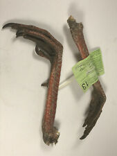 "Nice 8"" Kansas Turkey feet deep red sharp spur Complete nice claws w/ tag"