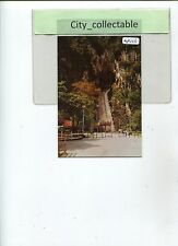 MP026 # MALAYSIA MINT PICTURE POST CARD G.W 130 * BATU CAVES HAS 227 STEPS