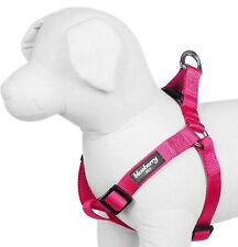 """New listing Blueberry Pet French Pink Classic Solid Dog Harness S: M Chest Girth 20""""-26"""" Nwt"""
