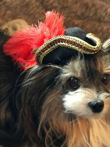 Halloween Pirate Victorian Colonial  Renaissance Dog Cat Hat XS-S Gold/Red/Black
