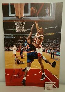 Scottie PippenSigned Chicago Bulls Stretched Canvas Photo Color 30x20 W275982