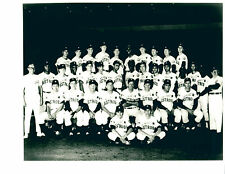 1969 HOUSTON ASTROS 8X10 TEAM PHOTO WATSON RADER TEXAS  BASEBALL MLB
