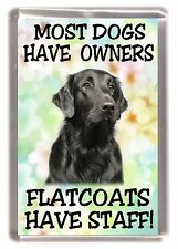 "Flatcoated Retriever Dog Fridge Magnet ""......Flatcoats Have Staff!"" - Starprint"