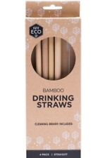 Ever Eco Bamboo Drinking Straws with Cleaning Brush | Pack of 4 Reusable Straws