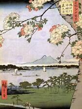 HIROSHIGE JAPANESE POSTER 100 VIEWS EDO 035 ART PAINTING PRINT 12x16 inch 2692OM