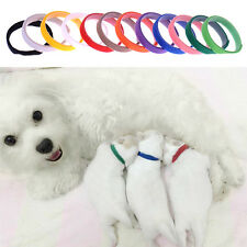 12x Réglable Collier ID Identification Bande Ras Cou Pr Chiot Chien Chat Chaton