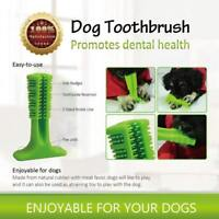 Brushing Stick World's Most Effective Toothbrush for Dog Pet Oral Care Molar Toy
