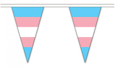 Transgender Triangle Bunting 54 flags on this 20 meter Long Bunting