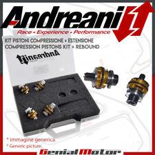 Andreani Pistoni Pompanti Compressione + Estensione Yamaha YZF R6 1999 > 2002