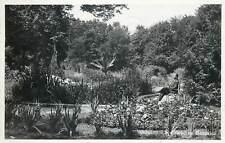 Ukraine Romanian Occupation Czernowitz Cernauti CHERNIVTSI botanical garden 1938
