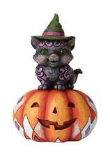 Jim Shore Black Cat on Pumpkin/Jack O' Lantern Heartwood Creek 6001548 New