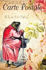 Postcard French Vintage Shabby Chic Style Humanised Frog Toad, Coat, Floral 90J