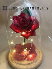 Beauty and the Beast Enchanted Rose *FROSTY VERSION* VALENTINES/BIRTHDAYS ETC