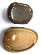 Tumbled Ordinary Grade Tiger's Eye Stone Pair 64.3 gram 39.2 g & 25.1 g